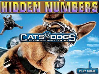 貓狗大戰找數字