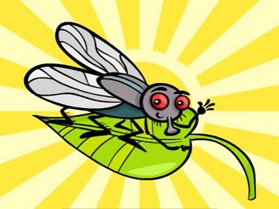 昆蟲找不同