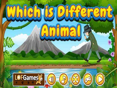 叢林動物找不同
