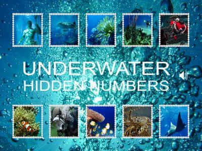 海底世界找數字